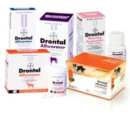 drontal tablet